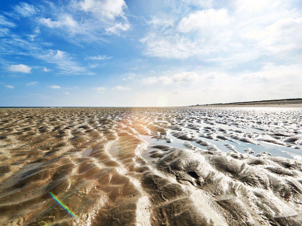 Blick auf den Wattboden am Wattenmeer in Ostfriesland