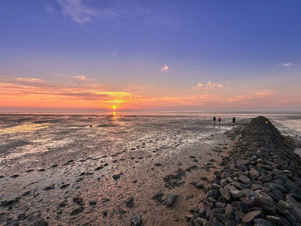Kommunikation des Wattenmeeres über die Region hinaus