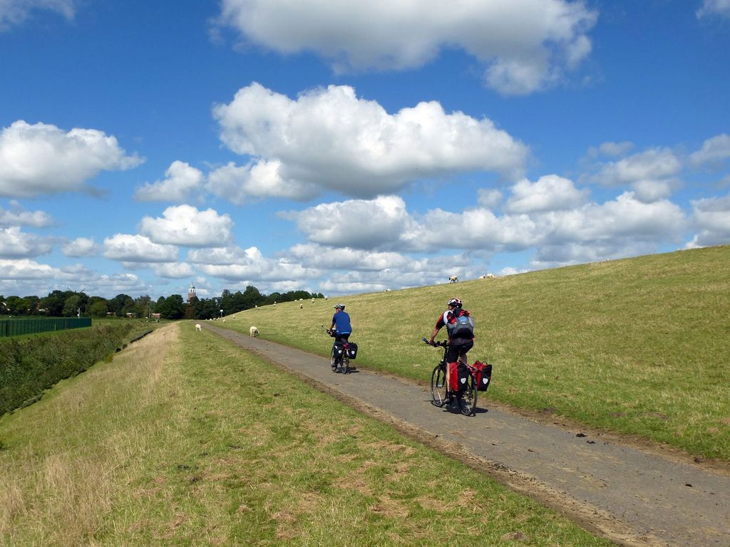 Mit dem Fahrrad durchs Rheiderland, vorbei an Deich und Schafen